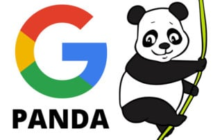 Duplicate Content, Canonicalisation and Google Panda