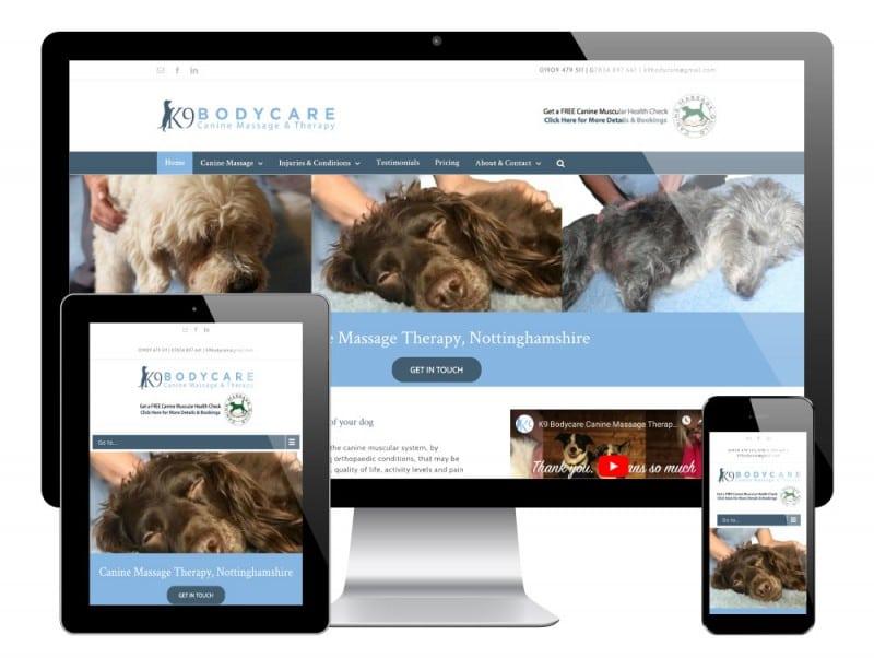 K9 Bodycare WordPress Website